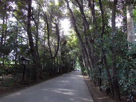 久伊豆神社参道