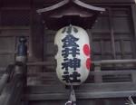 小金井神社の周辺は、緑豊かなところでした。