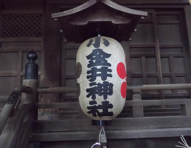 小金井神社ちょうちん