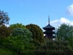 京都、東寺の春バージョン
