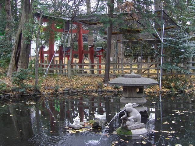 つきじんじゃ池