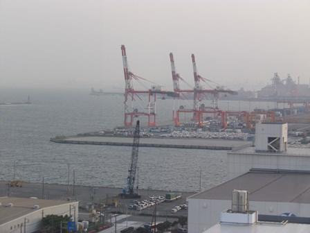 東京湾のキリン