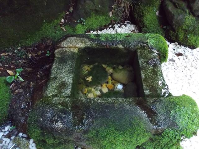 御神水、氷川神社