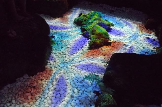 川越氷川神社聖水