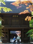 紅葉がキレイな平林寺に新緑の季節に行って