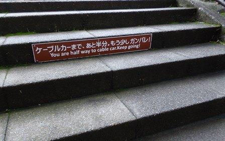 大山ケーブルカー前坂