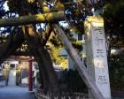 荏柄天神社(受験の神様)と鎌倉宮(厄除けと厄割り石)