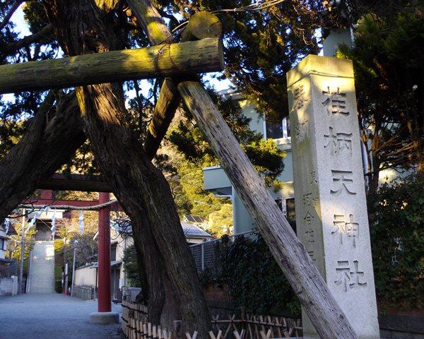 荏柄天神社参道