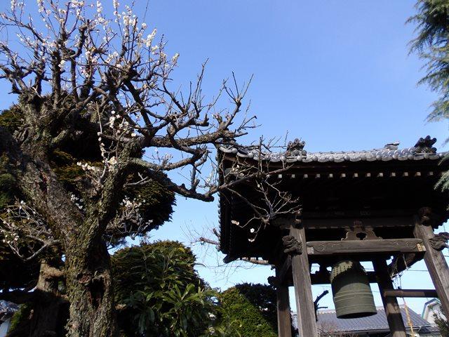 長泉寺庭鐘