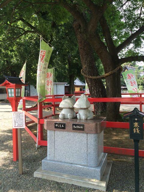 箭弓神社縁結びの木