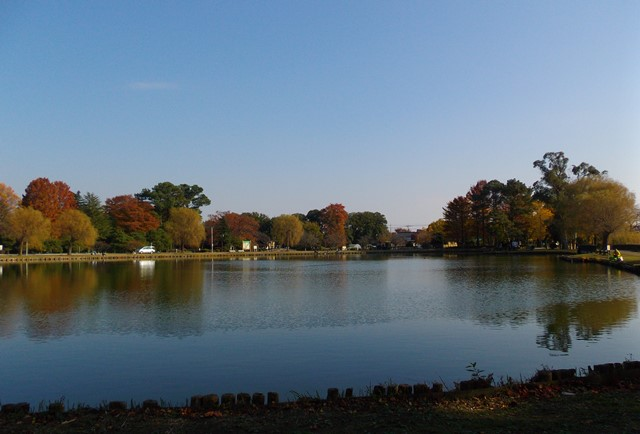 水城公園池