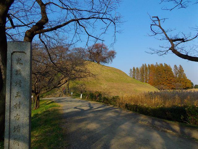さきたま古墳公園