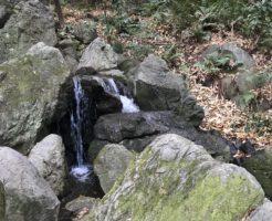 池田山公園パワースポット