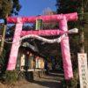 星宮神社(下野市のトトロ神社)で金のもぐらと年末の行灯鳥居を見た
