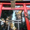 馬橋稲荷神社で昇り龍をみてきた!上昇運のパワースポット