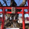 秩父今宮神社は一粒万倍日に金文字の限定御朱印「お姿」バージョンに