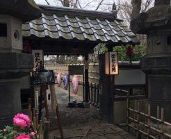 上野東照宮ぼたん