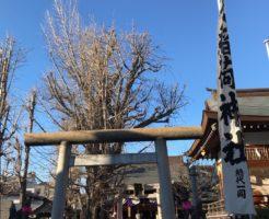 飛木稲荷神社の御神木
