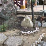 高木神社のむすび石